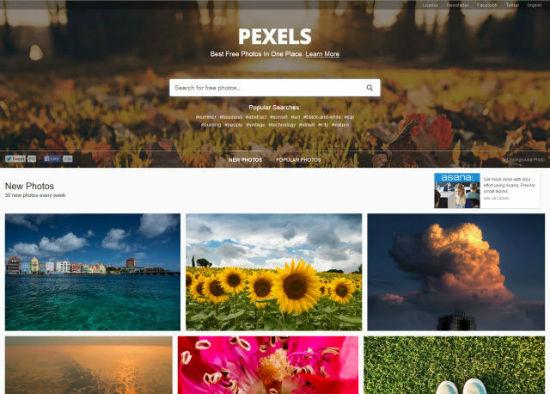 pexels-landing-page