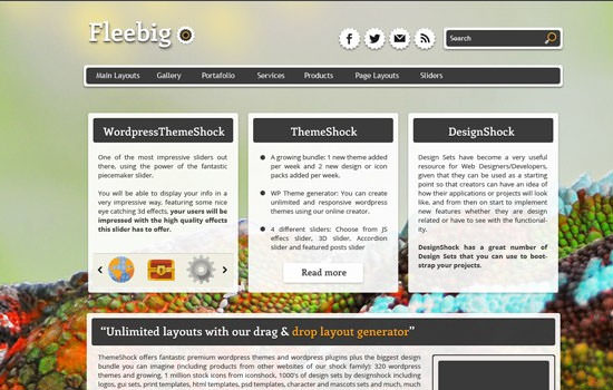 Fleebig WP theme