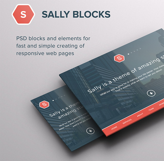 sally-blocks
