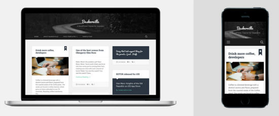 Das Baskerville WordPress Theme
