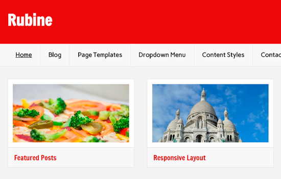 Rubine lite wordpress themes