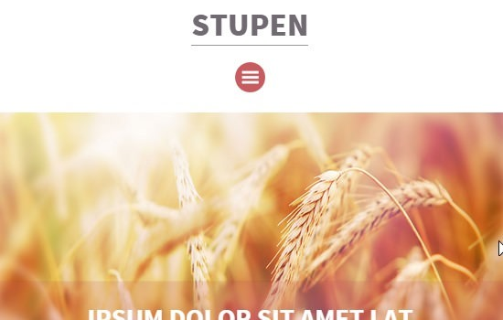 stupen-a-single-page-multipurpose-flat-bootstrap-responsive-web-template-by-w3layouts