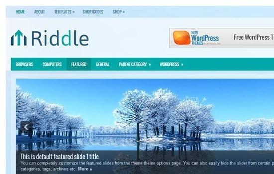 riddle-free-wordpress-theme