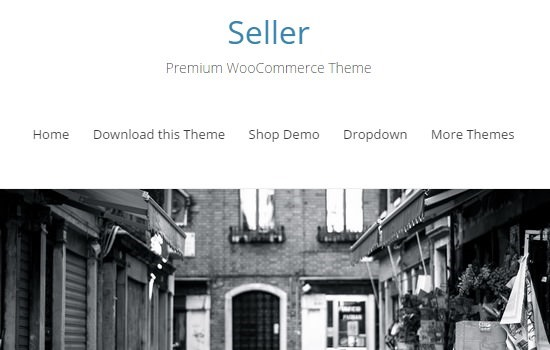 seller-woocommerce-wordpress-theme