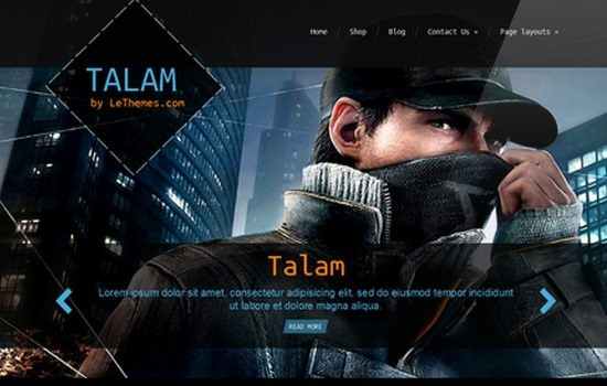 talam-premium-wordpress-theme-lethemes
