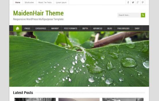 wordpress-maidenhair-free-wordpress-themes