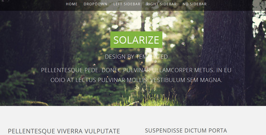 solarize - html5 template