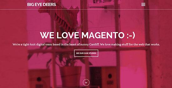 07-clean-colorful-websites-bigeyedeers