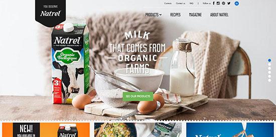 14-clean-colorful-websites-natrel