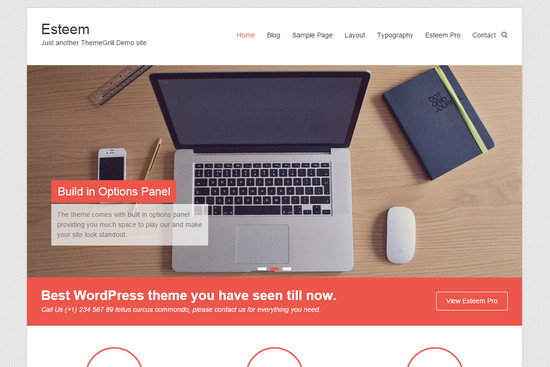 esteem wp theme