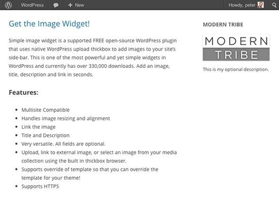 image-widget-screenshot2