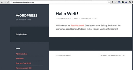 neue-wordpress-multisite-website