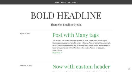 Bold Headline Theme