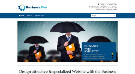 Business Pro Theme