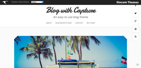Capture Free Theme