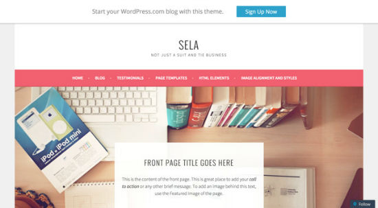 Sela WordPress Theme