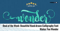 Deal of the Week: Beautiful Hand-drawn Calligraphy Font Makes You Wonder