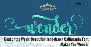 dotw-wonder_EN