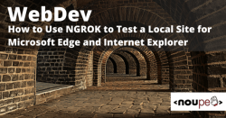 WebDev: How to Use NGROK to Test a Local Site for Microsoft Edge and Internet Explorer