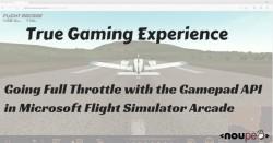 True Gaming Experience: Going Full Throttle with the Gamepad API in Microsoft Flight Simulator Arcade