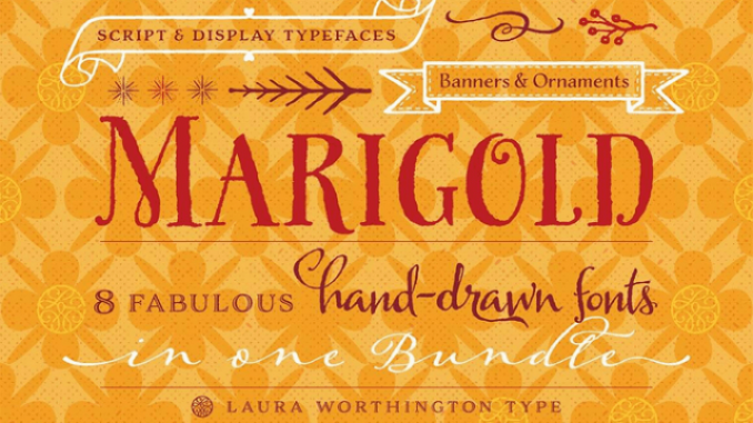 marigold_marigold-dealimage