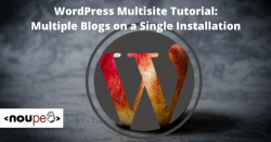 WordPress Multisite Tutorial: Multiple Blogs on a Single Installation