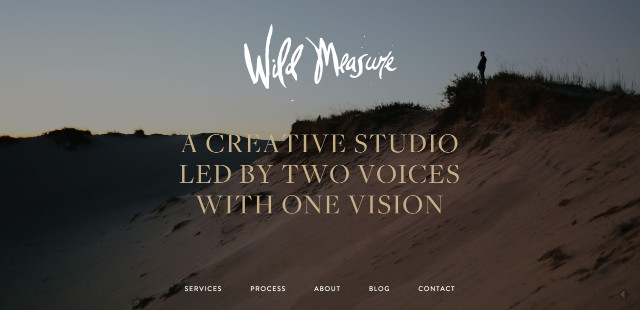 www.wildmeasure.com