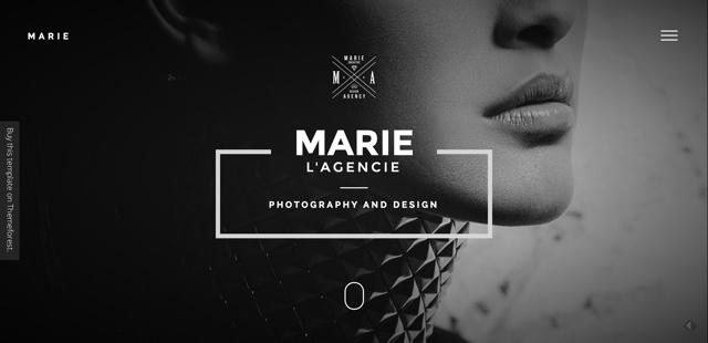 MARIE-Multipurpose-Creative-Portfolio