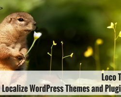 Loco Translate: Localize WordPress Themes and Plugins Easily