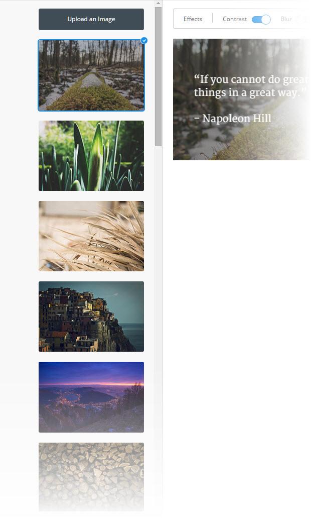 Ein paar Dutzend Bilder - Pablo 2