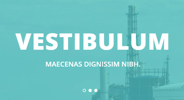 Rissner: Industrial-suited Flat Bootstrap Template