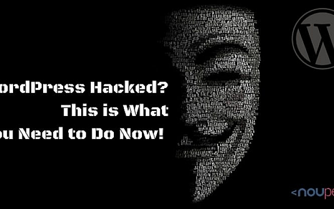 WordPress Hacked? This is What You Need to Do Now!