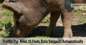 Truffle Pig: Knwl.JS Finds Data Snippets Automatically
