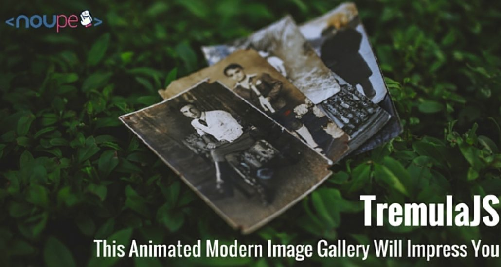 Tremula.js: This Animated Modern Image Gallery Will Impress You