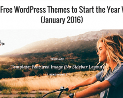 20+ Free WordPress Themes to Start the Year With  (January 2016)