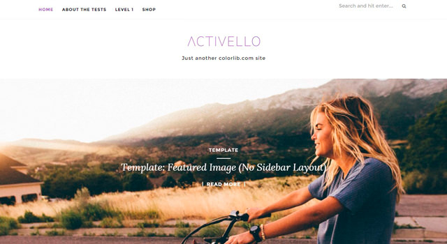 Activello: Simple Multipurpose Blogging WordPress Theme