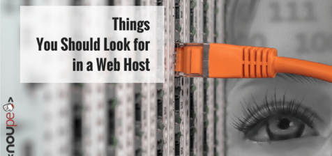 Things You Should Look for in a Web Host