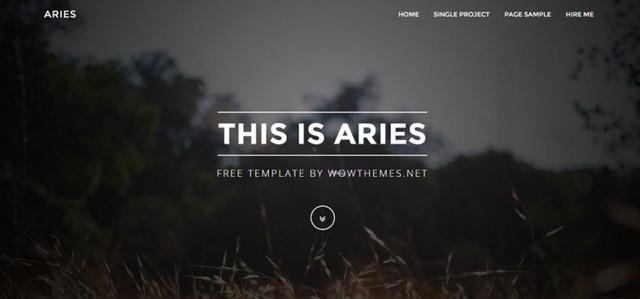 aries theme