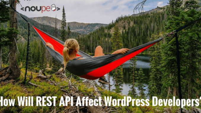 How Will REST API Affect WordPress Developers?