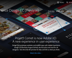 Adobe XD: What Can You Expect?