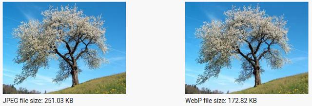 webp-2