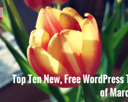 Top Ten New, Free WordPress Themes of March 2016