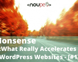 No Nonsense: What Really Accelerates WordPress Websites – [#1]