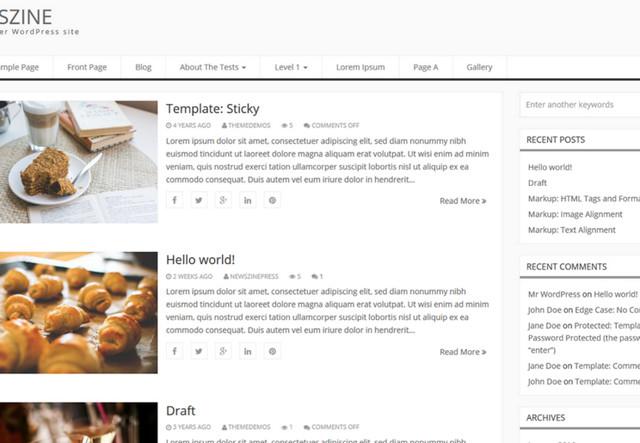 newszine theme