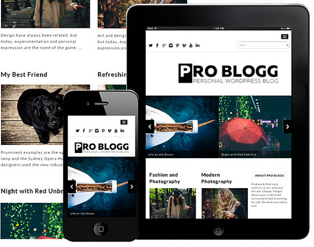 pro blog theme