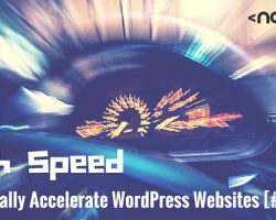 High Speed: Really Accelerate WordPress Websites [#3]