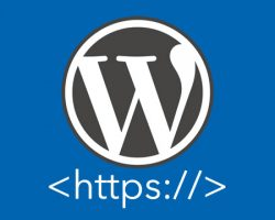 Easy: How to Switch Your WordPress to HTTPS
