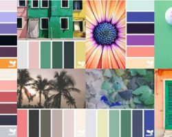 Design Seeds: Daily Inspiration From Photos and Colors
