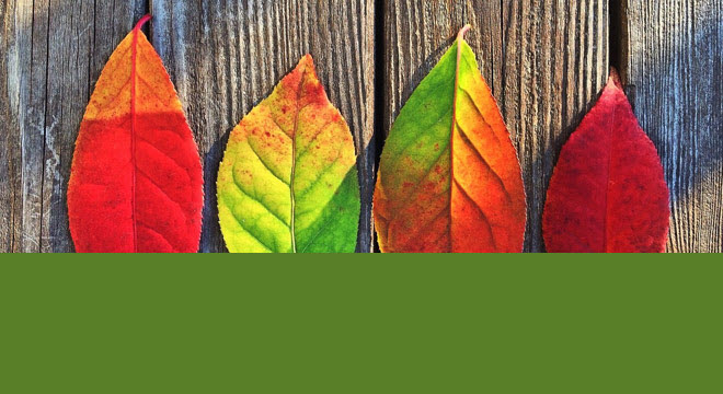 psychologie-der-farben-teaser