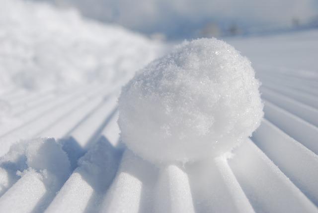 snowball-957759_640